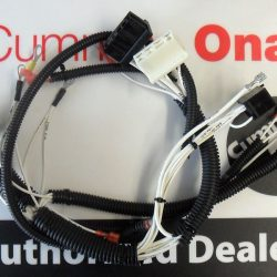 Onan QG RV 4000 wire harness 338-3812