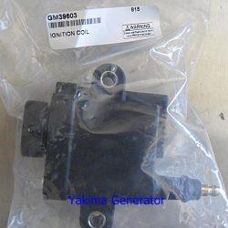 Kohler generator coil pack GM39603