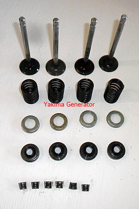Valves and Springs for 6.5 RMY K582