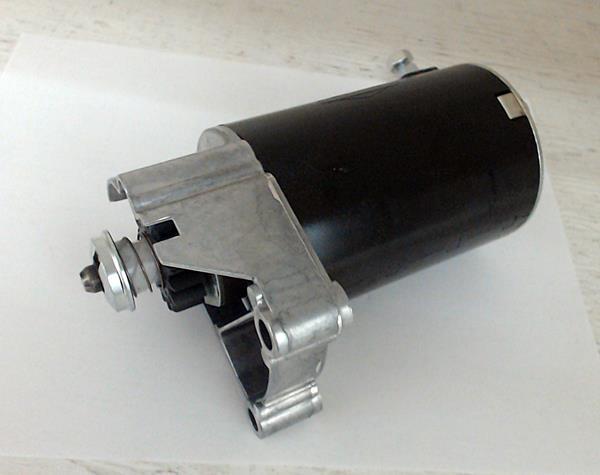 Briggs starter 498148